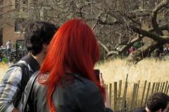 (paul.comstock) Tags: manhattan nyc newyork february 2017 feb2017 urban digital digitalphotography digitalphotograph canons120 canon s120 8feb2017 wednesday washsqpark washingtonsquarepark redhead redhair dyedhair