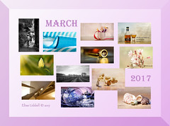 March 2017 at a glance (Elisafox22 slowly beating the Shingles!) Tags: elisafox22 march 2017 collage snapshot images summary thumbnails border elisaliddell©2017