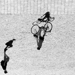 Rome - Bicycles in the Shadows (Padski1945) Tags: romemay2015 italy scenesfromoverseas bicycles bicyclesasart analternativepointofview adifferentview adifferentpointofview aquestionofpreference mono monochrome blackwhite blackandwhite blackandwhitephotography people peopleandshadows shadows shadow shadowplay theshadows theworldturnedupsidedown scenesofrome