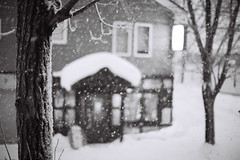 Snowfall (Explored) (OzGFK) Tags: winter snow film japan analog asia hokkaido nikkor snowfall niseko hirafu nikonfm3a