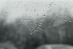 Kodak 400TX 2013, 2014 (ShaopengPitt) Tags: life winter blackandwhite snow 50mm waterdrop pentax takumar kodak 400tx princeton windshield smc plainsboro spotmaticf