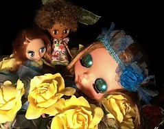 Blythe-a-Day July 2014 #1: Surprises: Wyn and Her Sisters