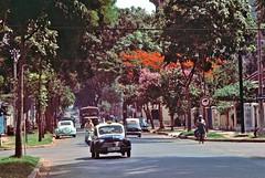 Saigon 1965 - Photo by William S. Fabianic - Đường Phan Đình Phùng nhìn từ ngã tư Phan Đình Phùng-Trương Minh Giảng (manhhai) Tags: