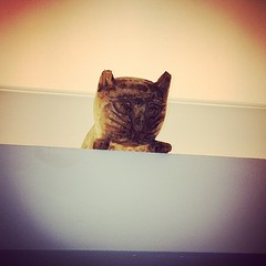 More late night meows... 4 months later, our cat is still wondering who the heck this is, how he got up there, and why he never moves.