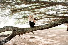 IMG_3413ChristineHewitt_YogicPhotos (yogicphotos) Tags: park travel woman india nature yoga women wideangle inge strong balance strength mysore core asana banyantree christinehewitt wideangleseatedforwardbend upavisthakonasana yogaphotography upavisthakonasanab yogaphotographer yogicphotos wideangleseatedbalancepose