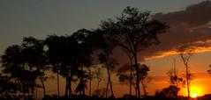 Por do Sol/ Sunset!!! (Nina Pimenta) Tags: sunset pordosol sol brasil landscape geotagged flickr br nimbus natureza go kingdom paisagem cu nina powers goinia gois bloomers pimenta bembrasil photographyrocks wikipdia grouplife abigfave flowersarebeautiful allxpressus concordians wikimdia apimenta paranoarte arealgem flickrflorescloseupmacros spectacularsunsetsandsunrises bemflickrbembrasil bemflickr flickraward flickrunitedaward naturesgreenpeace ninapimenta flickrsportal hennysgardens