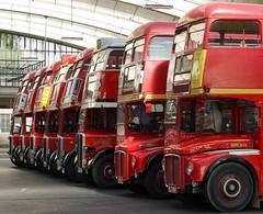 In Line (McTumshie) Tags: england bus london unitedkingdom routemaster rt rm stockwell stockwellbusgarage rt1702 yotb kyy529 rtl453 klb648 rtl1163 kgk803 rm1063 rtl139 rtl1076 luc253 yearofthebus stockwellbusgarageopenday 21june2014