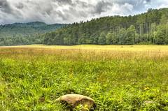 Distant Mountain View (flutterbye216) Tags: mountain field canon northcarolina elk smoky hdr photomatix canon60d flutterbye216 challengeclubchampion
