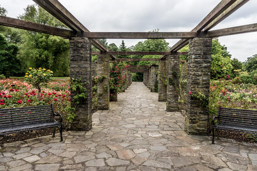 Botanic Gardens Belfast - A Nice Public Park