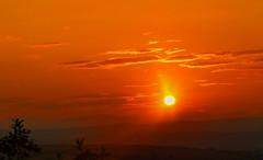blazing sun (museque) Tags: