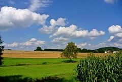 Delightful Odenwald (ivlys) Tags: summer nature germany landscape deutschland hessen sommer landschaft odenwald ernsthofen ivlys
