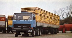 HG BROWN & SON BEDFORD TM (Xdriver2) Tags: brown bedford tm buzzard hg leighton pentus