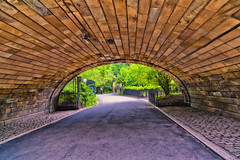D700 CP z21_0063 (JB Artful Photo) Tags: nyc newyork nikon centralpark manhattan newyorknewyork centralparkzoo