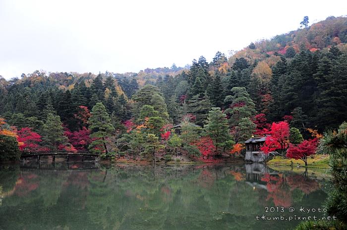 2013修學院離宮 (25).jpg