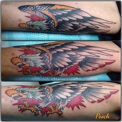 Did a fun eagle on my buddy Shawn #eagle #eagletattoo #traditionaltattoo @neotatmachines @fusionink_ca #alteredstatetattoo #eldubink #pooch_art