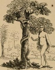 Anglų lietuvių žodynas. Žodis bounteous reiškia a 1) dosnus; 2) gausus lietuviškai.