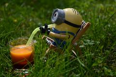 Minion im Urlaub (Rebecca S. Photography) Tags: toy nikon drink outdoor sommer urlaub wiese cocktail gelb gras summertime grn garten plastik minion latzhose d5100 nikond5100