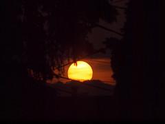 Evening sun (Grandpaparazzi) Tags: trees sunset orange sun toronto clouds orb wires housetop eastyorkactually