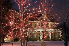 Home in C7 & Slo Mo (Christmas World) Tags: lighting christmas light house holiday snow tree led mo event incandescent slo c9 c7 christmaslitescom