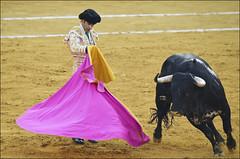 Jose Tomas 0208 (likamccuntz) Tags: feria bullfight malaga malagueta matador tauromaquia corridadetoros josetomas