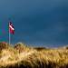 Denmark's pride (Denmark #28 Tornby Strand)