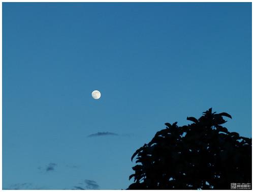 moon 7-9-14
