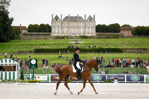 Alex and Harbour Pilot C at the dressage in Haras Le Pin, Normandy at the World Equestrian Games 2014 Photo Paul Xia Yuanpu