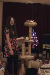 (chimidoro) Tags: christmas xmas uk home me december purple sweet romeo athome xmastree dorian ghostdog docmartens  fibreoptic cutiepies velvetcurtain 2013 chimidoro bluelipstick  roxannekirigoe newscratchpost   roxannekirigoe shikijitsu