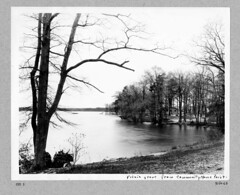 photo album 09264-01-ph018 (Olmsted Archives, Frederick Law Olmsted NHS, NPS) Tags: parks parvin