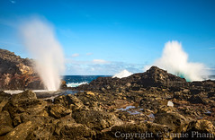 The eruption of Nakalele Blowhole in Maui. (Jampham) Tags: water lava high shoot natural crash famous north explosion large landmark maui icon geyser northern westcoast volcanic geysir eruption touristattraction rugged crashing rockformation nakaleleblowhole nakalelepoint poundingsurf