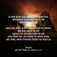 কোরআন, সূরা আল-ইমরান (৩), আয়াত ৮৫, ৮৬ (Allah.Is.One) Tags: faith truth quran verse ayat ayats book message islam muslim text monochorome world prophet life lifestyle allah writing flickraward jannah jahannam english dhikr bookofallah peace bangla bengal bengali bangladeshi বাংলা সূরা সহীহ্ বুখারী মুসলিম আল্লাহ্ হাদিস কোরআন bangladesh hadith flickr bukhari sahih namesofallah asmaulhusna surah surat zikr zikir islamic culture word color feel think quotes islamicquotes