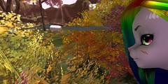 RainKao_014 (Kyon43) Tags: secondlife furry spring