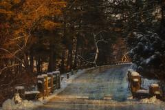 Winter Road (bsurma) Tags: landscape bsurma people bill surma billsurma