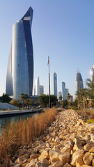 Kuwait City, backdrop to Al Shaheed Park (Colin McLurg) Tags: kuwaitcity backdrop alshaheedpark colinmclurg cityscape palmtrees skyscrapers towers park landscape twistedtower kuwait citypark