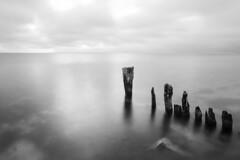 pier decay (eb78) Tags: ma massachusetts marthasvineyard newengland bw blackandwhite monochrome greyscale grayscale oakbluffs longexposure decay
