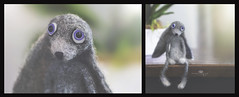 unhurried hare (rockinmonique) Tags: felting felted imadethis hare animal toy miniature small cute ditptych moniquew canon canont6s tamron copyright2017moniquew
