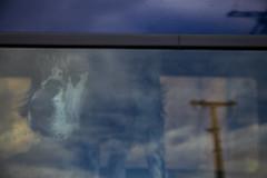 LE RÊVE DU CHIEN. (HRMDINOSAURIO) Tags: dobleexposure exposure dobleexposición exposición azul blue perro chien dog posts postes animales animals portraits retratos bilbao zorrozaurre 2017