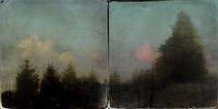The Sherragh Vane iii (mark kinrade) Tags: sherraghvane mist trees diptych manx vintage