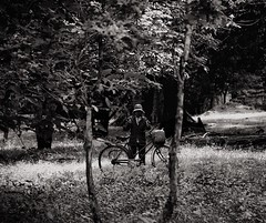 l  l (62dingos.deviantart.com) Tags: angkortour angkor cambodia asia travel worker trees bicycle woods betweenthetrees