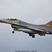 Belgian Air Force ( Belgian Air Component) F-16AM 31 Sqn. FA-124