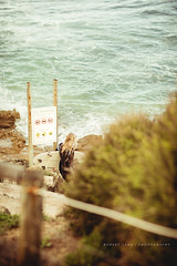 Girl surfer at Cottesloe Beach, Western Australia (Robert Lang Photography) Tags: ocean travel sea woman beach water girl sign danger fun rocks surf surfer candid free lifestyle australia surfing chick blond perth surfboard western wa sharks cottesloe recreation westernaustralia wetsuit robertlang robertlangphotography wwwrobertlangcomau girlsurferatcottesloebeach