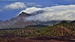 View from Samara to west coast of Tenerife (flowerikka) Tags: clouds island lava spain bluesky pines tenerife teide volcan bluesea picoviejo