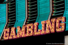 Gambling in Neon (www.davidbaxendale.com) Tags: las vegas gambling sign neon casino freemont