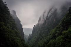 HuangShan (Yellow Mountains), China (lea.maguero) Tags: china trip mountain tourism nature monochrome yellow rock pine clouds landscape smog granite vegetation steep huangshan anhui