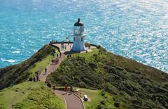 100 - L'extrême nord de Nouvelle-Zélande
