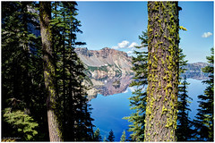 Trees at Crater Lake (ScottElliottSmithson) Tags: blue mountain lake mountains nature oregon canon spectacular landscape eos volcano nationalpark cascades 7d pacificnorthwest craterlake nationalparks mountainlake volcanic cascademountains cascaderange astonishing craterlakenationalpark bluest usnationalparks volcaniclandscape volcaniclake eos7d dtwpuck scottsmithson scottelliottsmithson