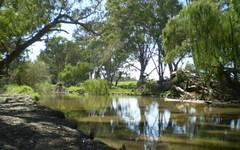 The Pannikin Sturt Highway, Wagga Wagga NSW