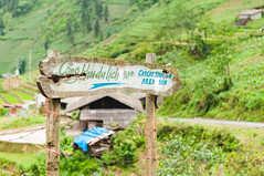 Go to Cat Cat! (Raquel Endless) Tags: travel viaje town alone vietnam traveling catcat sapa hmong