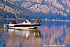 THE GOOD LIFE (Aspenbreeze) Tags: dog lake water reflections river boat fishing outdoor boating wyoming grandtetons motorboat lakejenny aspenbreeze moonandbackphotography bevzuerlein