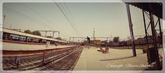 Ludhiana Junction (naveensharma) Tags: travel india punjab ludhiana indianrailways
